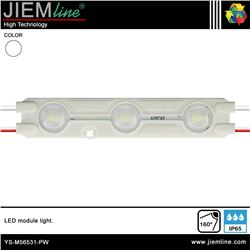 MODULO LED RECTANGULAR BLANCO PURO IP65 - YS-M56531-PW