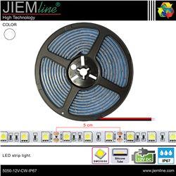 TIRA LED BLANCO FRÍO 12V DC IP67 - 5050-12V-CW-IP67