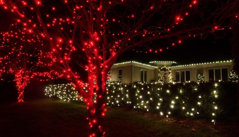 LED LIGHTING CHRISTMAS